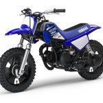 Moto piwi 50 prix