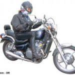 Kawasaki en 500 custom occasion