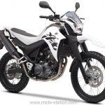 Moto occasion trail yamaha