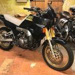 Annonce moto professionnel