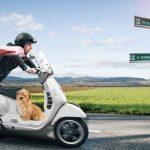 Assurance de scooter