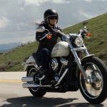 Moto custom harley-davidson occasion