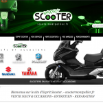 Reparation scooter montpellier