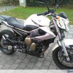 Moto 600cc occasion